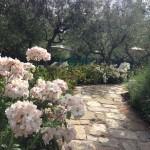 nun-hotel-spa-review-gardens