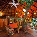 treehouse-lodge-entrance
