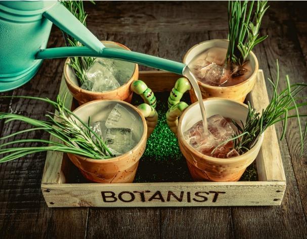 botanist restaurant birmingham