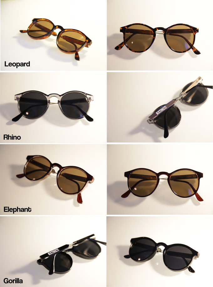 sunglasses-selection