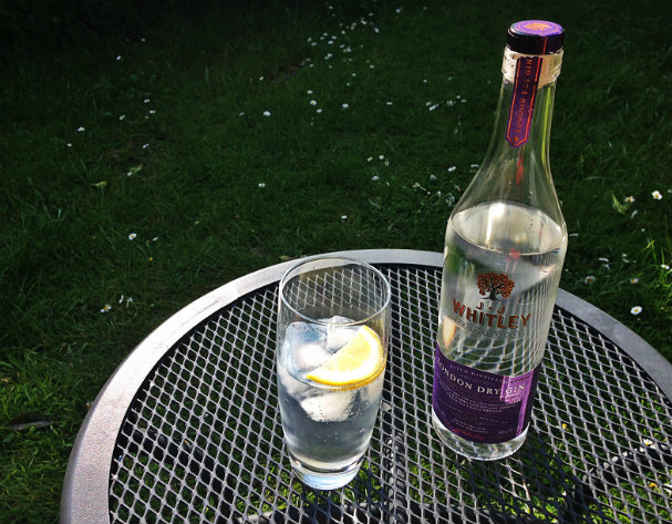Perfect summer Gin and tonic