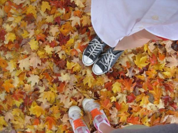 Autumn treats for post-holiday blues